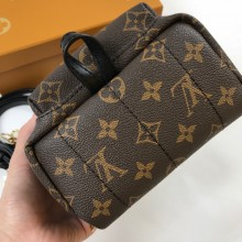 Рюкзак LOUIS VUITTON LV6